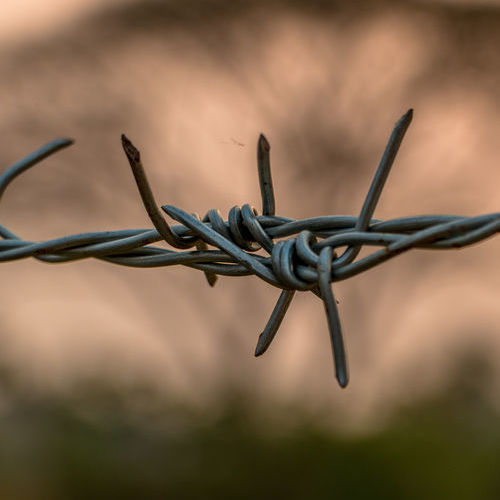 A Section of Barbed Wire Fencing.