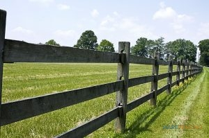 Split Rail Fence Installation